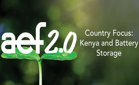 Country Focus: Kenya and Battery Storage image
