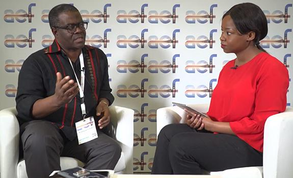 aef TV interview with H.E. Hon. Fortune Chasi, Minister of Energy & Power Development, Zimbabwe image