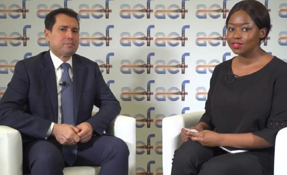 aef TV interview with H.E. Dr Slim Feriani, Minister for Industry & SMEs, Tunisia image