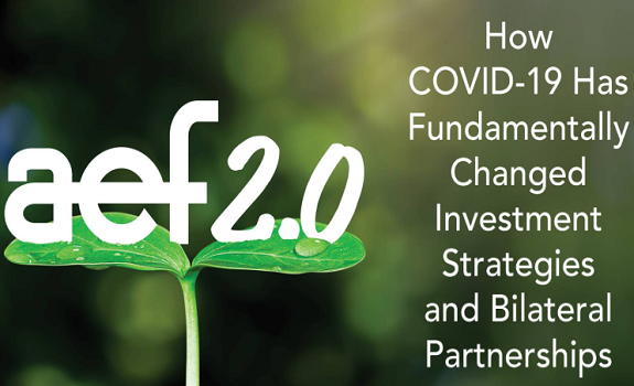 How COVID-19 Has Fundamentally Changed Investment Strategies and Bilateral Partnerships image
