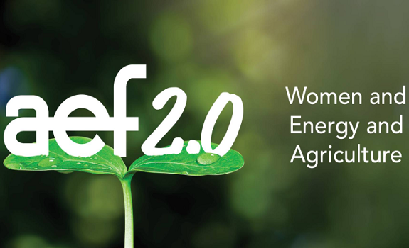 Women, Energy and Agriculture image